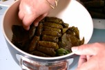 Lebanese Stuffed Grape Vine Leaves-Warak Arish (DSC_0254)