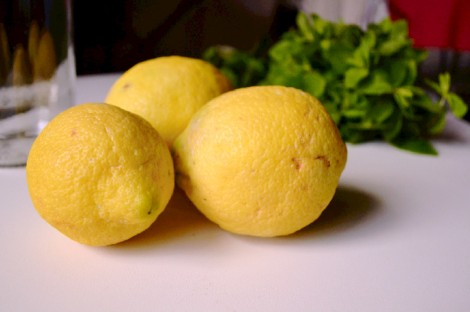Sugar Free Mint Lemonade (CSC_1043)