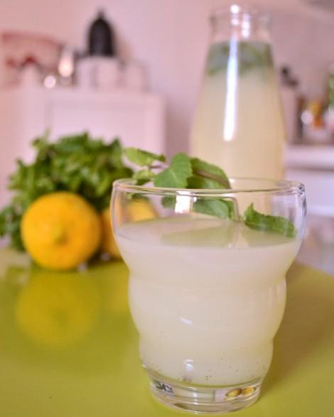 Sugar Free Mint Lemonade (CSC_1072)