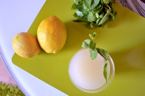 Sugar Free Mint Lemonade (CSC_1087)