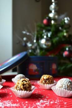 Fruit&Nut Truffles (DSC_0760)