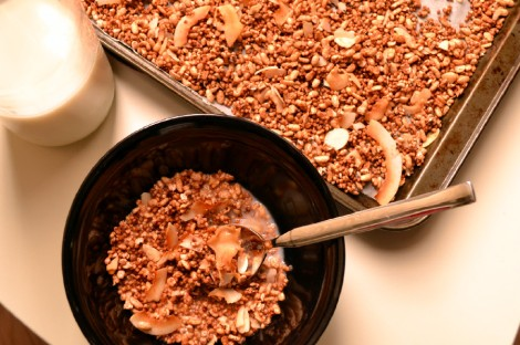 Cinnamon Coconut Crunch Cereal (DSC_1066)2