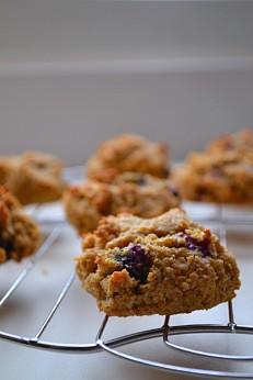 Blueberry Coconut Macaroon Cookies (DSC_0053)
