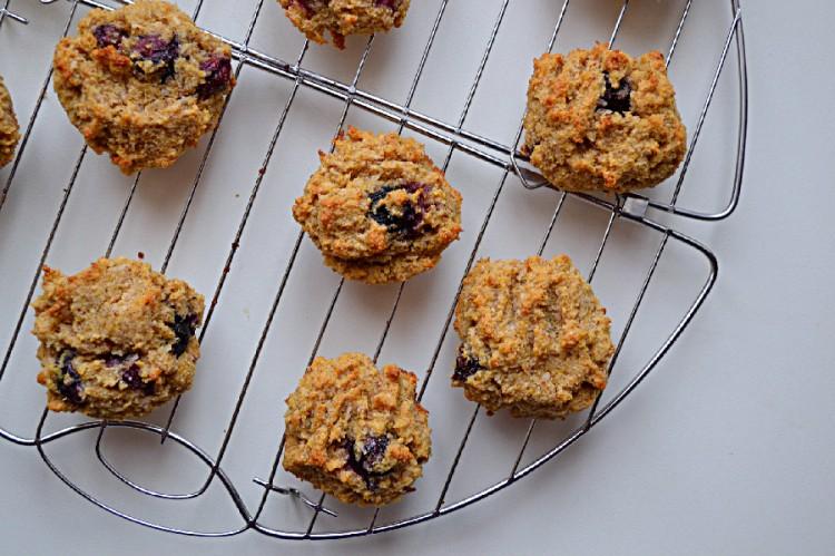 Blueberry Coconut Macaroon Cookies (DSC_0057)
