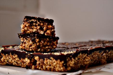 Cereal Bars w: Hemp, Flax, Chocolate (DSC_0531)