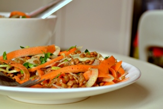 Lentil, Carrot and Fennel Salad (CSC_1137)